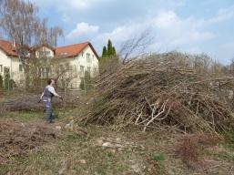 Obecná záhrada Rača v roku 2011.
