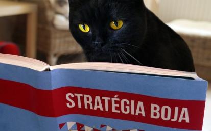 """O priazeň zabojuje aj prostredníctvom bilboardov, podporného tímu a so sloganmi ako """"Nevoľte mačku vo vreci"""" alebo """"Skutočné zviera v politike""""."""