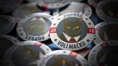 V propagačných materiáloch sa označuje ako nezávislá, hrdá a energická mačka s jedinečným pohľadom na svet.